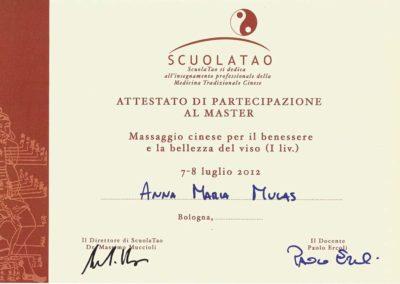 PARTECIPAZIONE AL MASTER DI MASSAGGIO CINESE PER BENESSERE E BELLEZZA LIV. 1 7-8_7_2012 copia