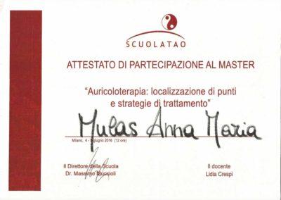 master auricoloterapia 5_6_2016 copia