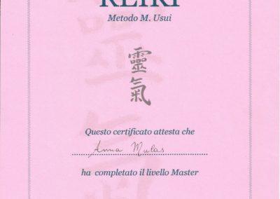 LIVELL MASTER REIKI METODO M. USUI 7_2_2009