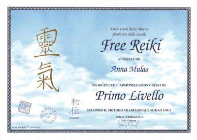 REIKI PRIMO LIVELLO MIKAO USUI 6_2_2010
