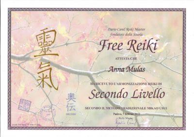 SECONDO LIVELLO REIKI MIKAO USUI 7_2_2010